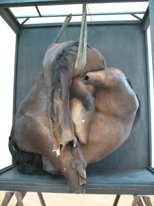 Horse hide sculpture - a provocative display of what looks like two decapitated horses