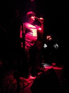 Joe Nemeth - Blues harmonica and lead singer