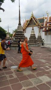 I only saw one monk while I was there, which surprised me