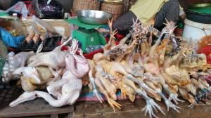 Chickens - Siem Reap Market